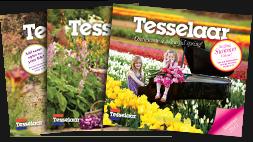 Tessealaar_magazines